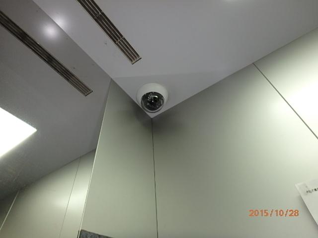 PA280152.jpg