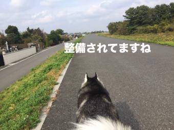 IMG_2509_Fotor.jpg