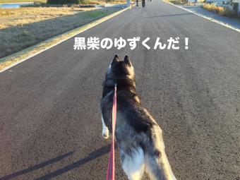 IMG_2592_Fotor.jpg