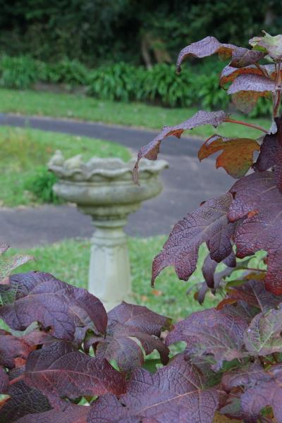 くりはま花の公園