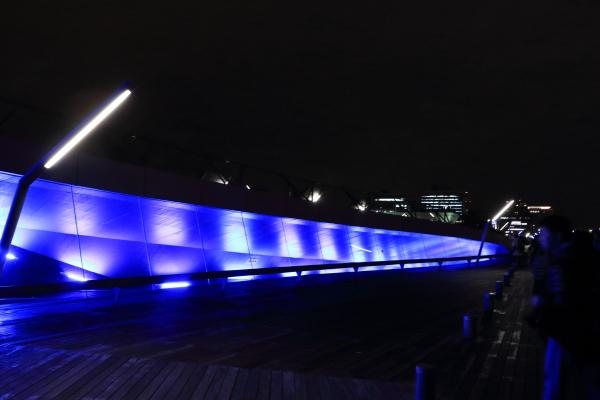 イオス学園 横浜夜景 11/20/2015