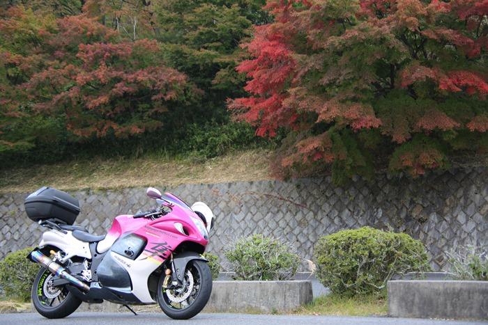 2015_10_22_e001.jpg