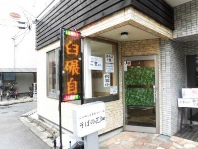 花畑 (4)