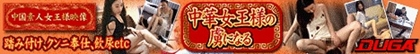 中国人バナー