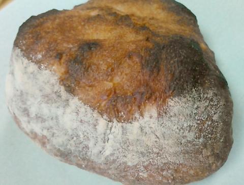 豆パン屋 アポロ (9)