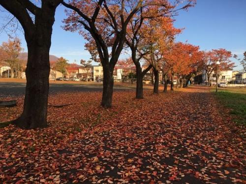 2015-11-12妙高市文化ホール紅葉1