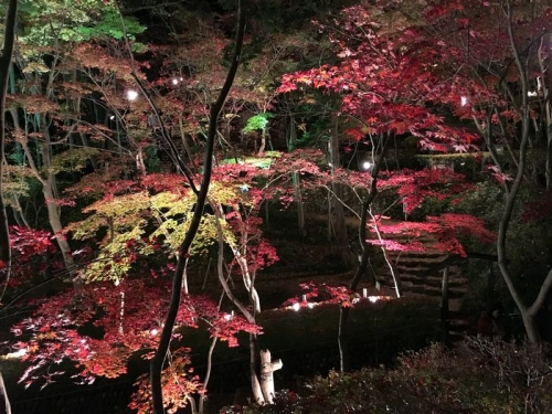 松雲山荘3