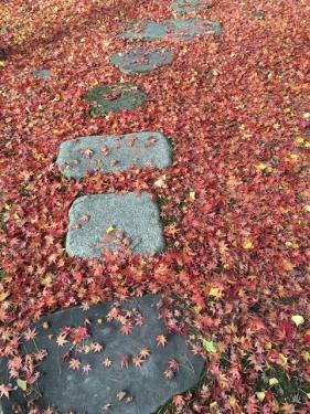 2015-11-12石畳