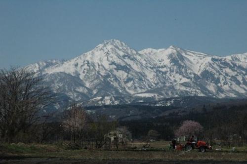 20100501中郷岡沢2