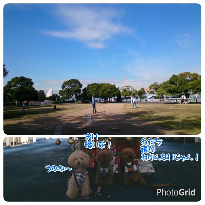 20151127232519d91.jpg
