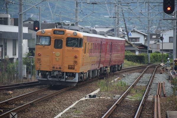 DSC_9600_R.jpg