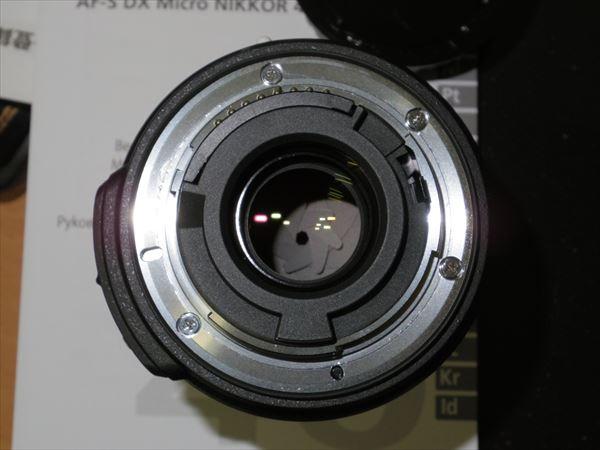 IMGP5261_R.jpg