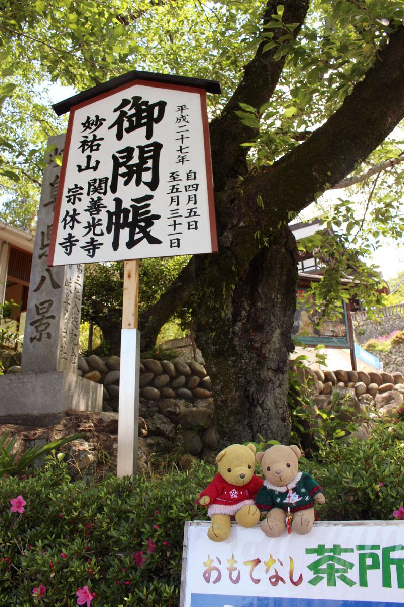 関善光寺で 150521