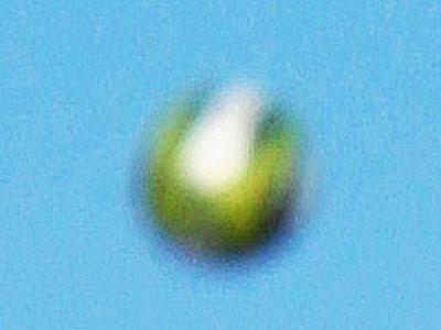 UFO拡大