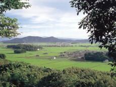 蒲生野風景