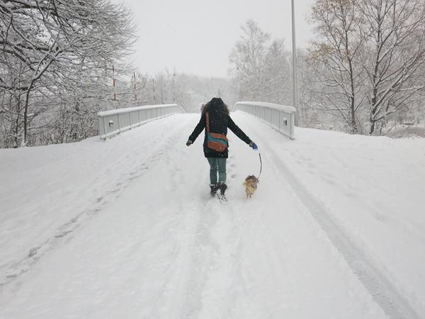 真駒内公園 どか雪