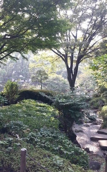 横浜公園10月