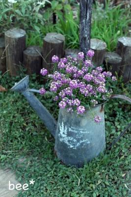 ジョーロの植木鉢