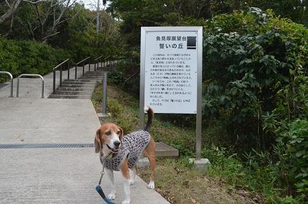 20151023魚見塚一戦場公園02