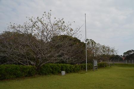 20151023魚見塚一戦場公園18