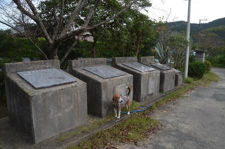 20151023曽呂小学校04