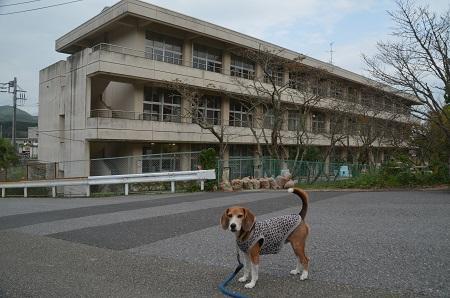20150123吉尾小学校16