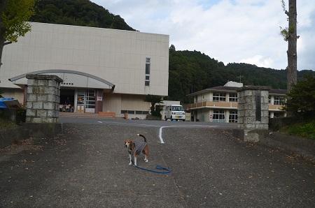 20151023大山小学校18