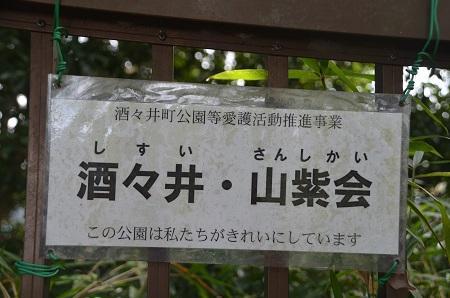 20151101酒々井築山22