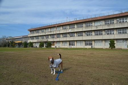 20151101新東小学校24