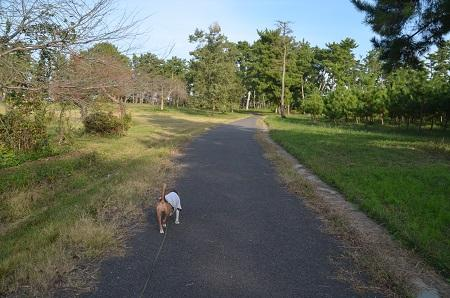 20151101和田公園05