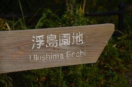 20151101和田公園04