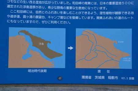 20151101和田公園03