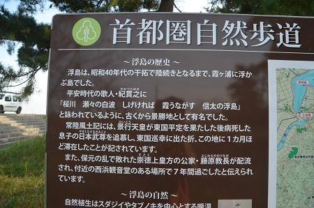 20151101和田公園12
