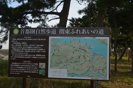 20151101和田公園13
