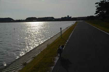 20151101和田公園20