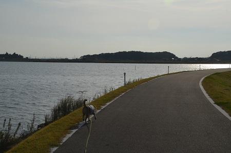 20151101和田公園19