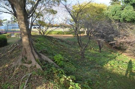 20151111岩名運動公園22