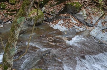 20151122的様の滝05