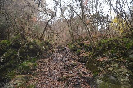20151122的様の滝11