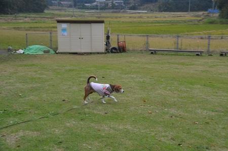 20151202松崎台公園06