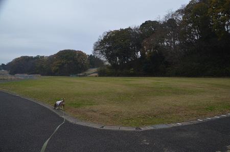 20151202松崎台公園12