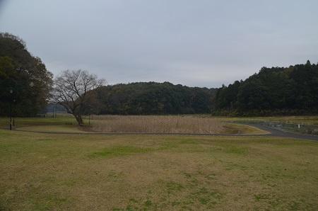 20151202松崎台公園13