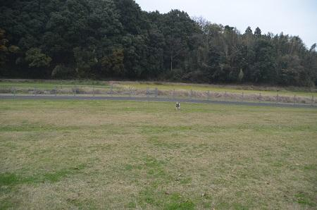 20151202松崎台公園21