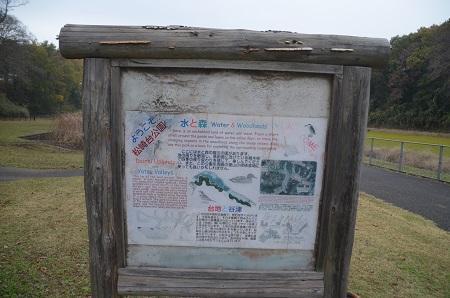20151202松崎台公園31