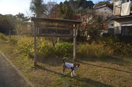 20151207桜城城址公園05