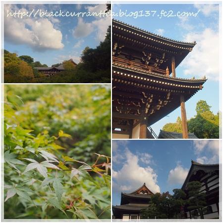 201510東福寺