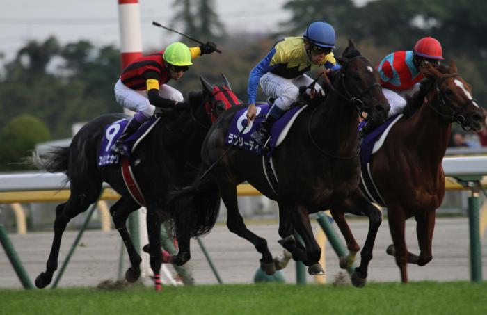 2015 天皇賞秋 レース1