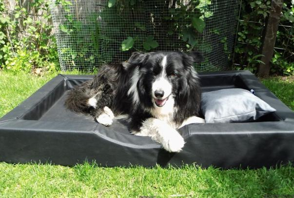 doggybed_visco_compact.png