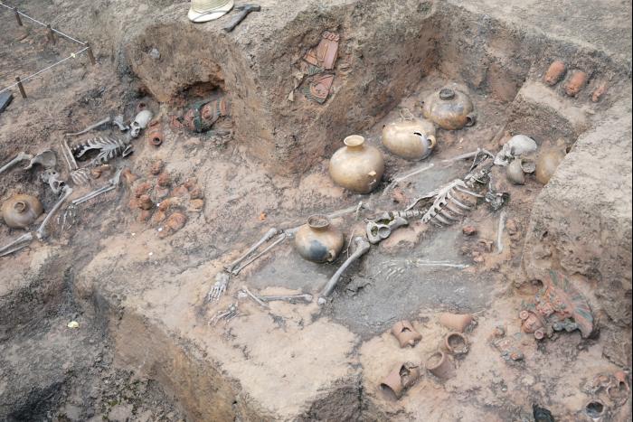 TDS 2015 ユカタンベースキャンプ 発掘現場 骸骨