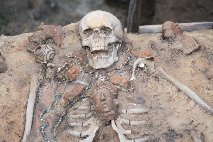 TDS 2015 ユカタンベースキャンプ 発掘現場 女性の骸骨